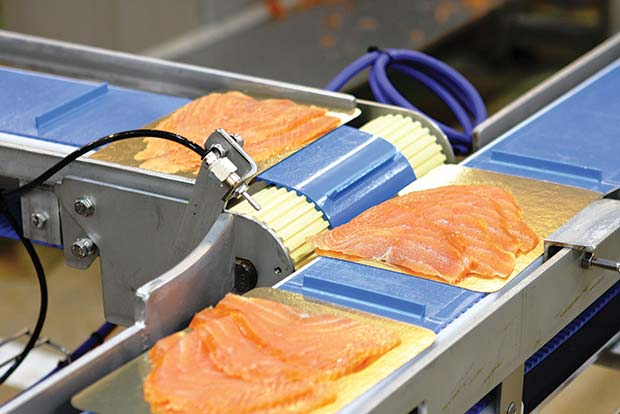 Hygienic-food-process-using-Interroll-Drive-Motor